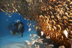 Baraza Resort and Spa Zanzibar - Занзибар - Фотогалерия - снимка 9
