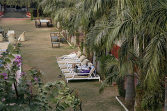 Ranthambore Regency - Рантамбор - Фотогалерия - снимка 4