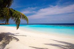 Lily Beach Resort&Spa - Малдиви - Фотогалерия - снимка 10