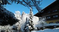 Alpenhotel Kitzbühel - Kitzbuehel, Тирол  - Фотогалерия - снимка 8