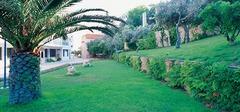Ammon Zeus Hotel - Халкидики - Фотогалерия - снимка 5