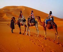 Имперските градове на Мароко - Фотогалерия - снимка 14