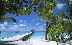 Малдиви - Раят на Земята - Фотогалерия - снимка 9