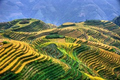 Най-доброто от Китай в 12 дни - Фотогалерия - снимка 15