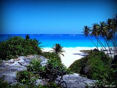 Барбадос - островът на мечтите - Фотогалерия - снимка 2
