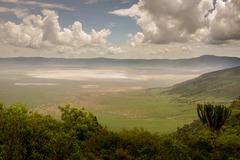 Индивидуално сафари в Танзания - Фотогалерия - снимка 2