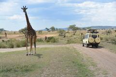 Танзания и Занзибар - Фотогалерия - снимка 8