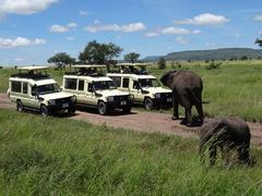 Индивидуално сафари в Танзания - Фотогалерия - снимка 10