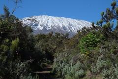 Килиманджаро - белият покрив на черния континент - Фотогалерия - снимка 2