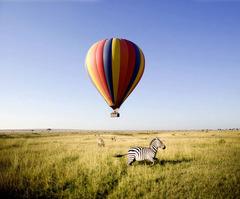 Сафари в Кения - Фотогалерия - снимка 5