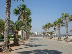 Нова година в Кипър - Фотогалерия - снимка 1