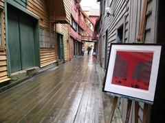 Норвегия и фиордите - група - Фотогалерия - снимка 16