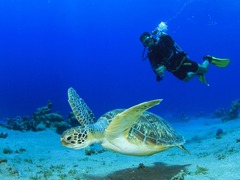 Почивка на остров Бали - Фотогалерия - снимка 1