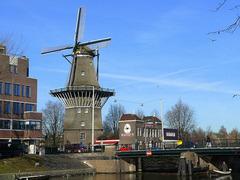 Амстердам - градът на лалетата - Фотогалерия - снимка 5