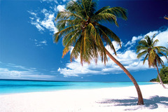Почивка на Доминикана