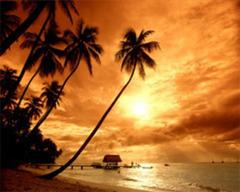 Почивка в Доминикана - Фотогалерия - снимка 6