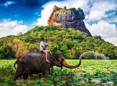 """Шри Ланка & Малдиви<br/><font color=""""#ff0000"""">ПОСЛЕДНИ 2 МЕСТА! </font>"""