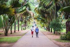 Шри Ланка и Малдиви - Перлите на Индийския океан - Фотогалерия - снимка 10