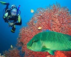 Шри Ланка и Малдиви - Перлите на Индийския океан - Фотогалерия - снимка 16