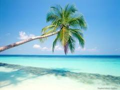 """Екскурзия """"Слънце и салса в Куба"""" - Фотогалерия - снимка 24"""