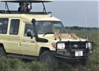 Сафари в Танзания и All Inclusive на остров Занзибар