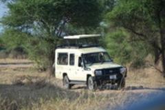 Сафари в Танзания и All Inclusive на остров Занзибар - Фотогалерия - снимка 4