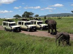 Сафари в Танзания и All Inclusive на остров Занзибар - Фотогалерия - снимка 8