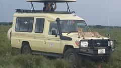 Сафари в Танзания и All Inclusive на остров Занзибар - Фотогалерия - снимка 18
