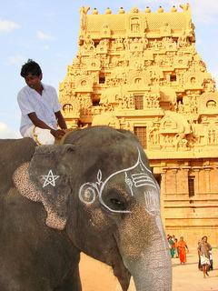 Индийска приказка - Тамил Наду и Керала - Фотогалерия - снимка 8
