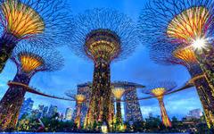 Сингапур и остров Бали - Фотогалерия - снимка 1