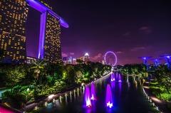 Сингапур и остров Бали - Фотогалерия - снимка 4