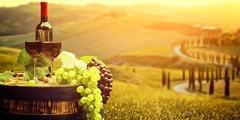 ТОСКАНА - история, вино и кулинарни приключения - Фотогалерия - снимка 3