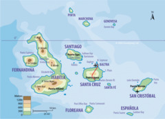 Колумбия, Еквадор и островите Галапагос - Фотогалерия - снимка 15