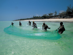 Почивка на остров Занзибар - Фотогалерия - снимка 11