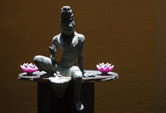 Аюрведа в Шри Ланка - Фотогалерия - снимка 2