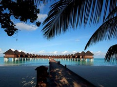 Малдиви - Olhuveli Beach and Spa Resort - Фотогалерия - снимка 8