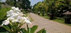 Най-луксозната Аюрведа в Индия - Фотогалерия - снимка 7