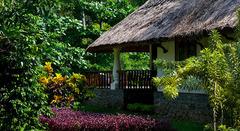 Най-луксозната Аюрведа в Индия - Фотогалерия - снимка 8