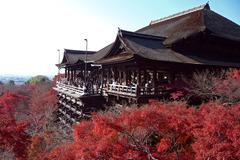 Южна Корея и Япония - Фотогалерия - снимка 6
