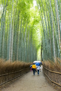 Великденски Гранд Тур - Китай, Корея и Япония - Фотогалерия - снимка 16